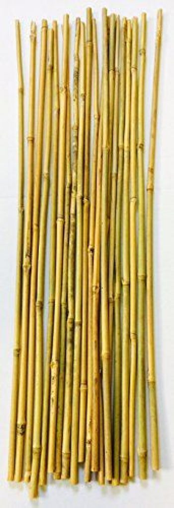 Cañas Bambú Decorativas Baratas Ultrachollocom Ofertas 2019